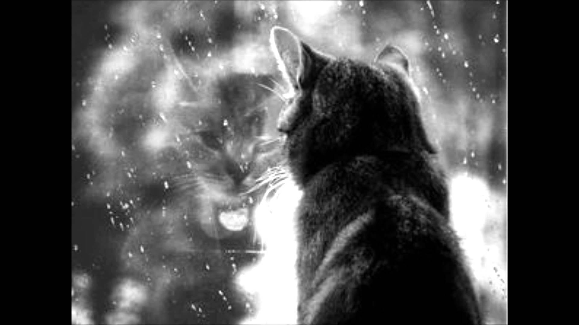 ちょっとお洒落なデザイン『猫画像特集』part6